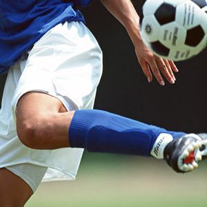 日本のスポーツが世界をリードする